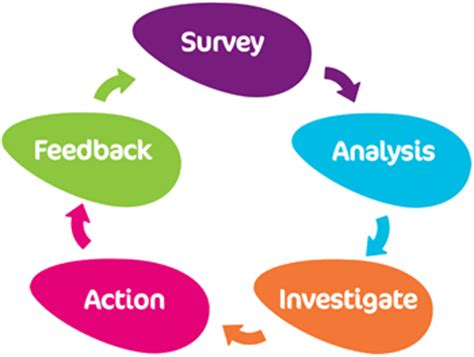 Define methodology in a research papers